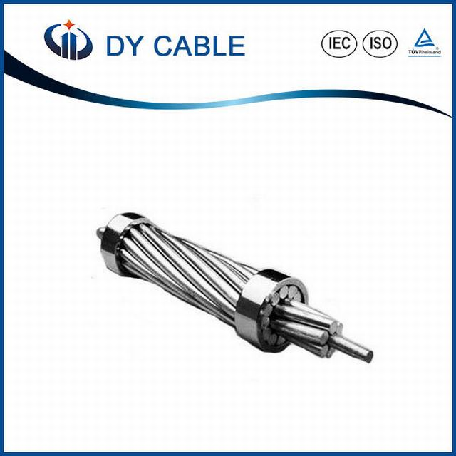 China Manufacturer Overhead All Aluminium Conductor AAC Cable