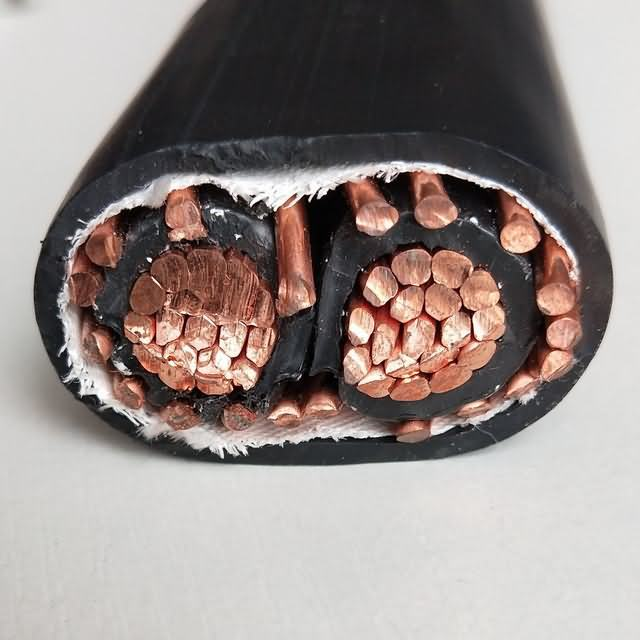 Two Phase Seu Power Cable Copper Service Entrance 2 Core Copper Concentric Electric Wire & Cable with UL854 Certificage