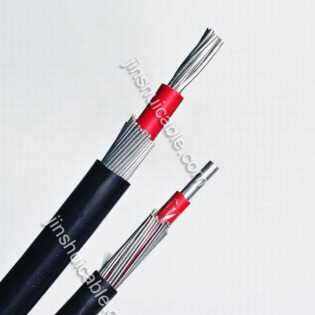 Concentric Cable 1kv 1X16 for Construction