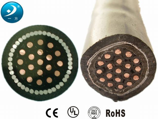 Control Cable with Solid Copper Conductors PVC Insulation PVC Sheathed